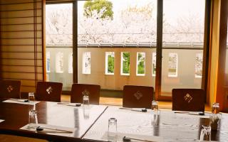 日比野の2階桜を見ながら食べる席